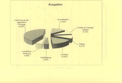 Haushaltsreden und Beschlussfassung zu den Haushaltsplänen 2012