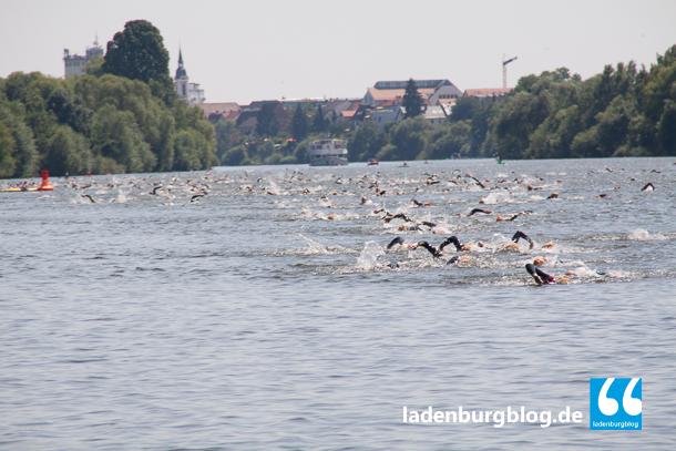 Es ist ein eindrucksvoller Anblick, hunderte Sportler durch den Neckar kraulen zu sehen.