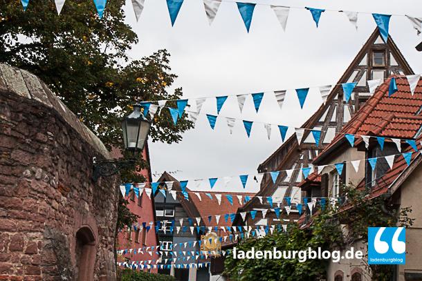 altstadtfest 2014-004-5558